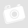 Kép 1/4 - Praga Caput Regni - magyar kiadás